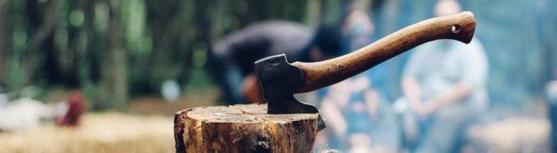 Fejlődés, pihenés, tanulás – karbantartás
